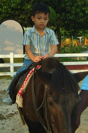 horse_r.jpg